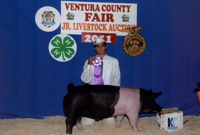 Champion Barrow & Supreme Champion Overall