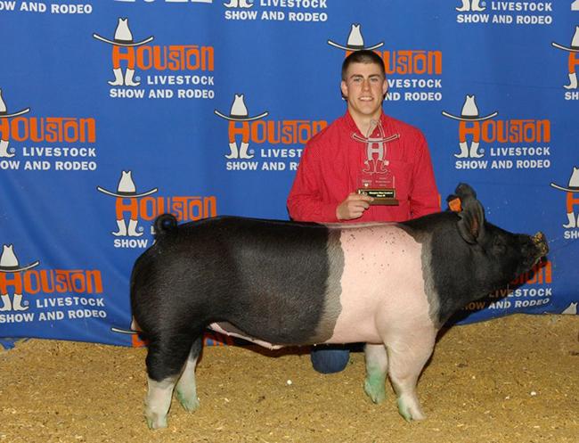 Class Winner, Heavy Weight Cross