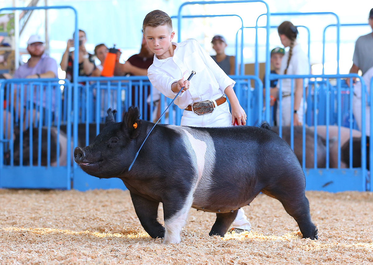 2nd in Class Gilt-14th overall