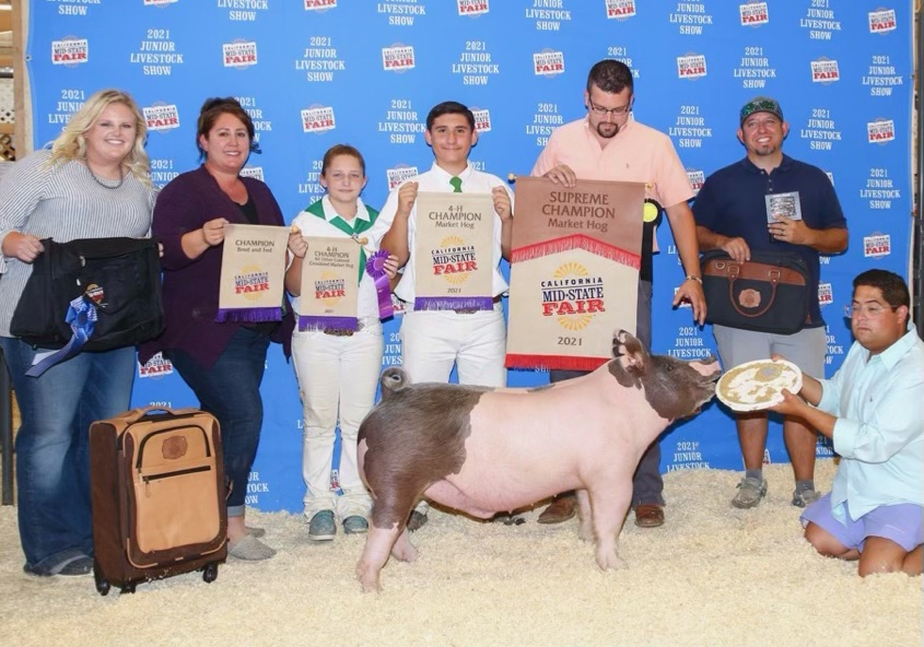 Supreme Champion Market Hog